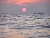 Tsurushima Island